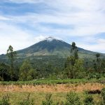 Sejarah Gunung Cikuray Garut